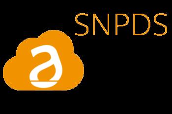 SINAPSI DATA SERVICE